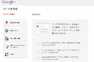 Google+ Page作成画面