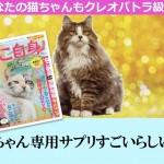 クレオパトラの猫,猫専用腸内環境サプリメント