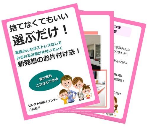 八田和子さん【無料電子書籍】捨てなくてもいい選ぶだけ! 新発想のお片付け法