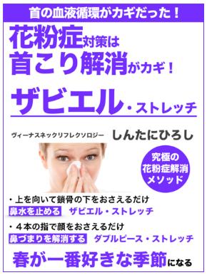 【無料eBook】花粉症と首こりは「ザビエルストレッチ」で対策!